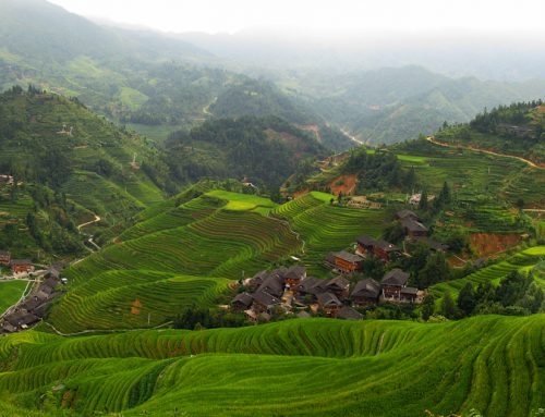 Hiking through China's Rice Terraces
